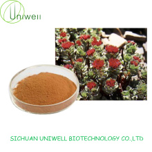 Rhodiola Rosea Extract 1%-3% Salidroside Powder