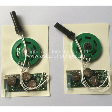 Pre-Record Sound Module, Motion Sensor Sound Module, Voice Chip