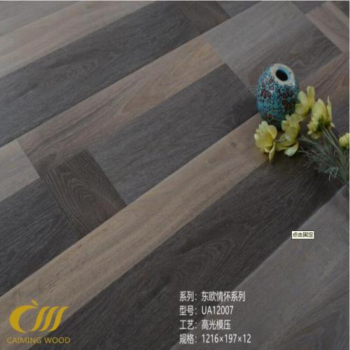 Laminate flooring  Mold press U-groove