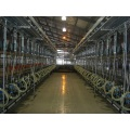 Dairy cow used milking parlor