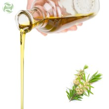 Tea Tree Essential Oil Price Factory Supply