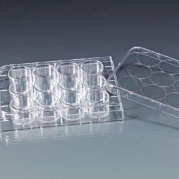 Sterile laboratory Cell Tissue Culture Plate
