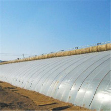 120 Micron UV resistant Agricultural Greenhouse Film