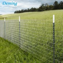 Steel Studded Agricultural Metal Y Fence Post