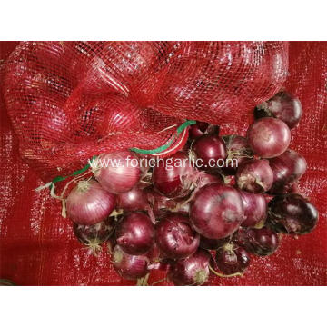 Fresh Best Quality Red Onion 2020