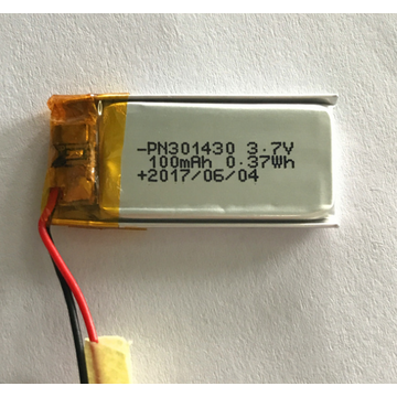 100mAh Lipo Battery for Recording Devices (LP1x3T3)