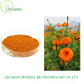 Marigold Extract Lutein 5%-90% Powder