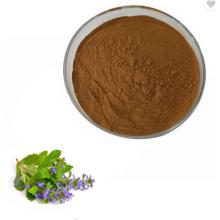 AMULYN Supply alfalfa extract powder alfalfa extract adalah