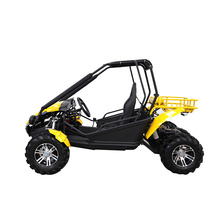 250cc adulte 4x2 go karts 2 places buggy
