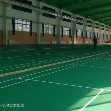 badminton sports court floor