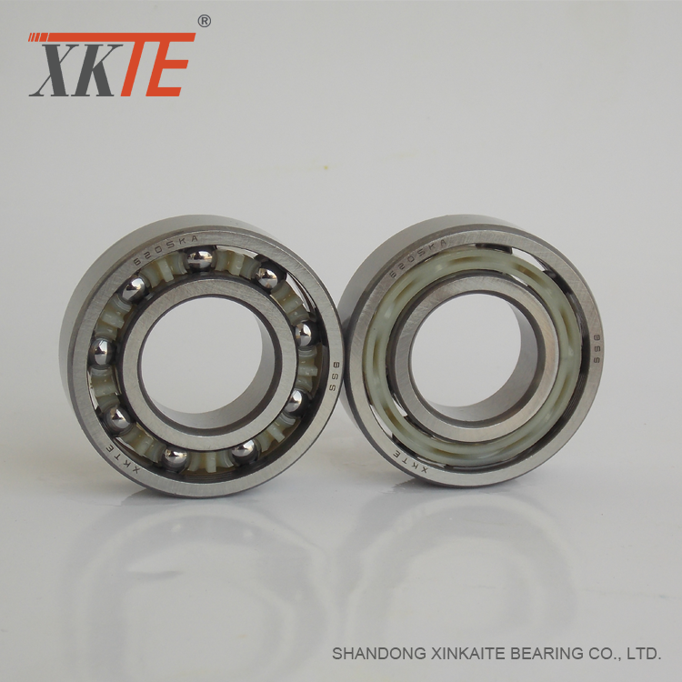 Rubber Sealed Polyamide Cage Bearing 6205 C3 RS/2RS
