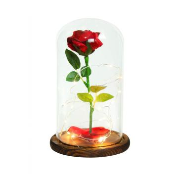 Glass Dome Flower Display With Wooden Base