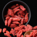Rraditional Herb Goji Berry