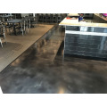 Bar Metallic Epoxy flooring