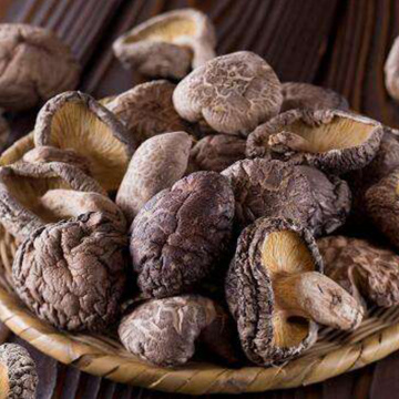 Dried Mushroom With High Nutritional Value