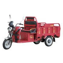 Small cargo electrically operated rickshaw