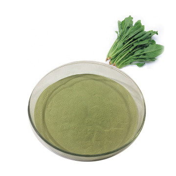 Best organic spinach juice powder