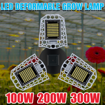 LED Sunlight Plant Light Bulb E27 Flower Hydroponics Grow Lamp 100W 200W 300W Seedling Fito Lamp LED Phyto Seed Growth Tent 220V