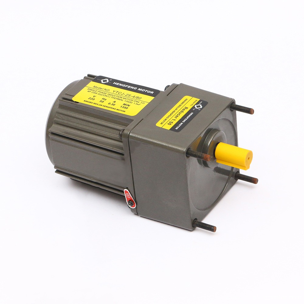AC Motor 25W Reversible Small Gear Motor