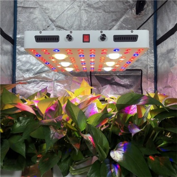 Dimmable 600watts CXB3590 COB LED Grow Fixture