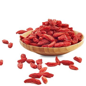 Organic Dried Ningxia Red Wolfberry for Cooking