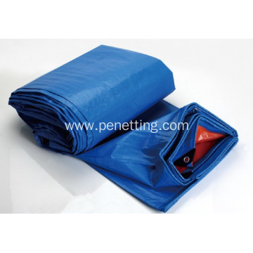 Hot selling plastic pe tarpaulin for agriculture