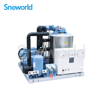 Snow world Flake Ice Machine in Malaysia