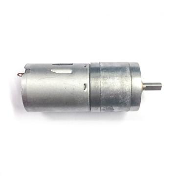 1:100 Gear Ratio 25mm 370 Gear Motor
