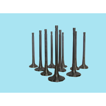 Best Selling Products Truck Diesel Engine Valve