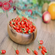 Goji berry/ Wolfberry /New crop organic goji berry