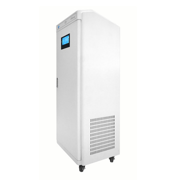 portable air purifier ionizer