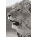 Black and white lion grassland mosaic art tiles