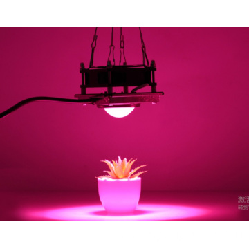 Grow light 200w cob plant light