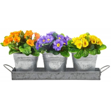 Tin Planter Pots With Rectangular Tray