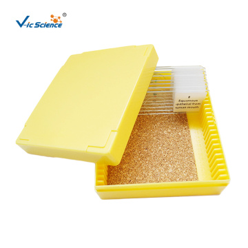 Yellow Microscope Slide Storage Box
