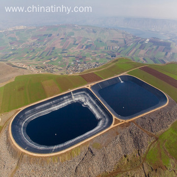 Geomembrane with high break tensile strength