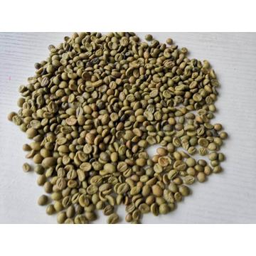 Robusta Coffee Beans Online