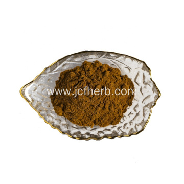 Inonotus Obliquus Extract Powder Chaga Extract Powder