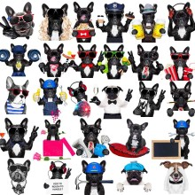 Various French Bulldogs DIY Patches On Cloths Iron On Heat Transfer Printing Stickers For Clothes T-shirt Appliques Washable
