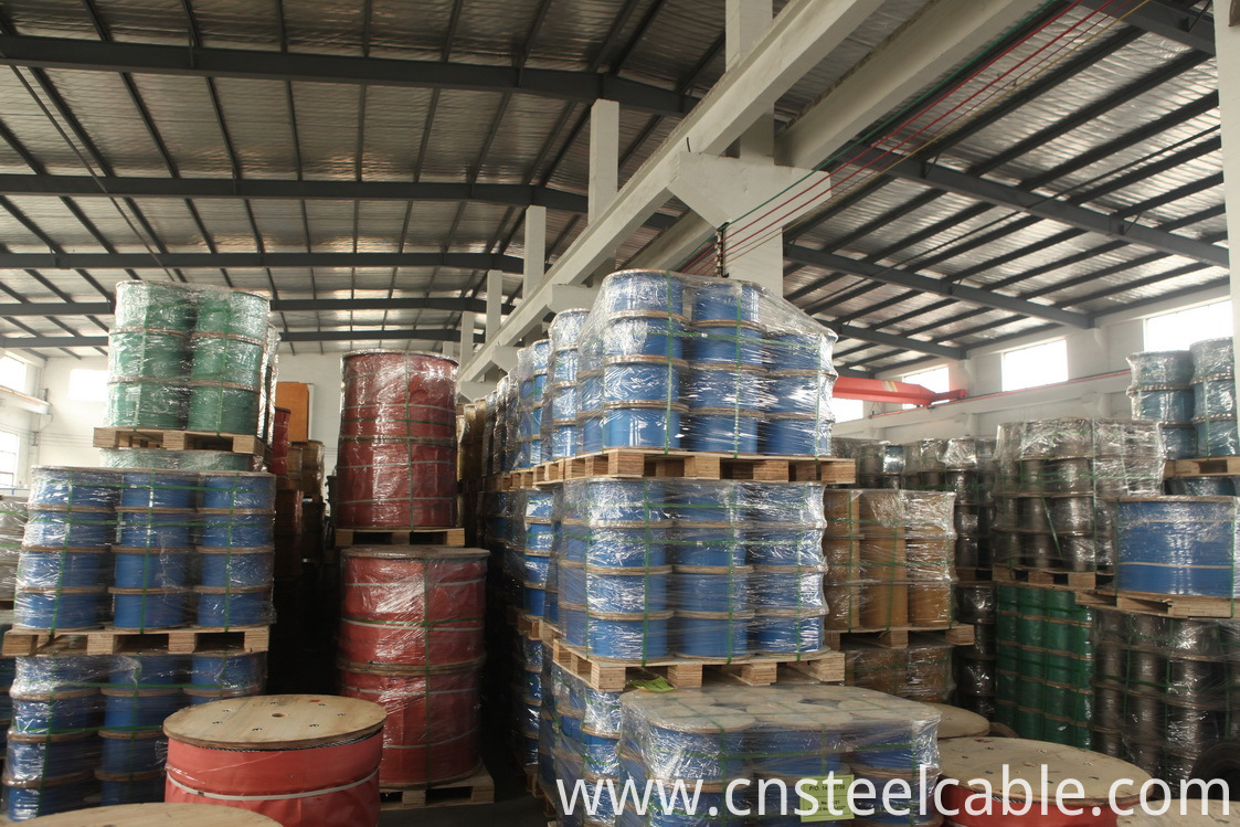 Steel Wire Rope Warehouse