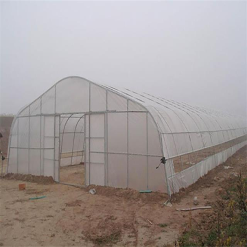 Film Greenhouse Tunnel for Seed Breeding/Strawberry