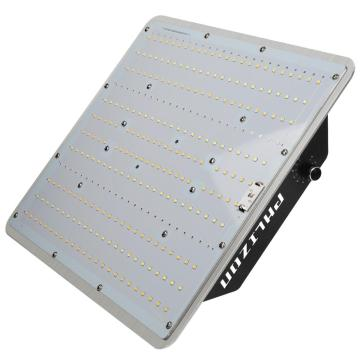 Phlizon Led Grow Lamps for Auto Flowering
