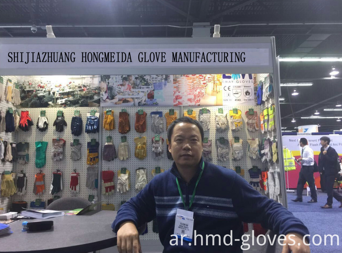 Exhibition Gloves
