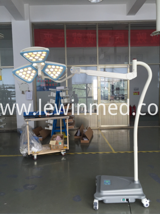 Flower Shape Mobile Lamp