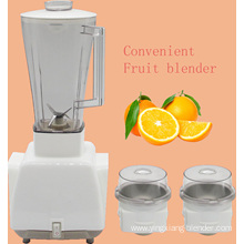 Multi-Function Vegetable and Fruit Blender