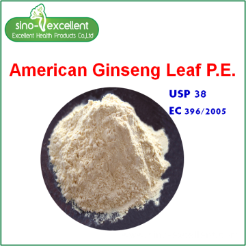 American ginseng leaf extract