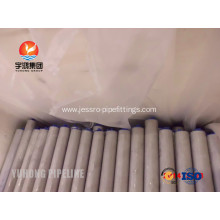 ASTM A789 S31803 Seamless Duplex Steel Tube