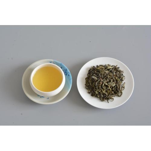 OP Import Green Tea Pricing High Quality Chinese