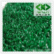 Carpet Grass Price for Golf