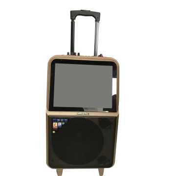 Rechargeable Trolley Speaker with screen and Mic